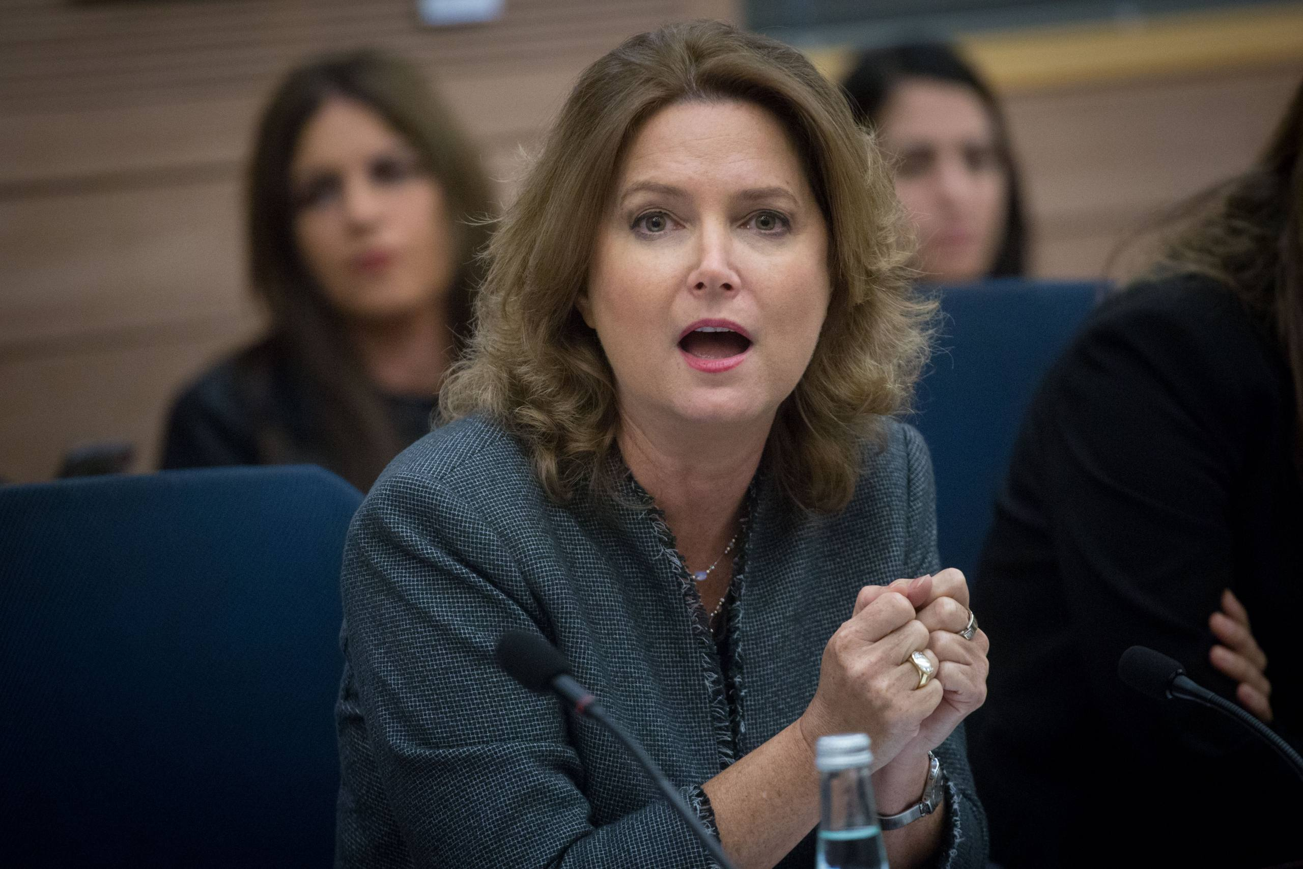 MK Michal Rozin seen during a meeting of the Education, Culture, and Sports Committee in the Israeli parliament on November 6, 2017. Photo by Miriam Alster/Flash90 *** Local Caption *** מיכל רוזין