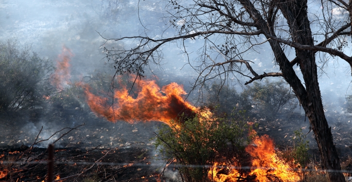 Israeli firefighter try to extinguish a fire which broke out in Park Lachish near the southern city of Ashdod on April 29, 2013. Photo by Flash90 *** Local Caption *** ?????  ???? ???? ???? ????