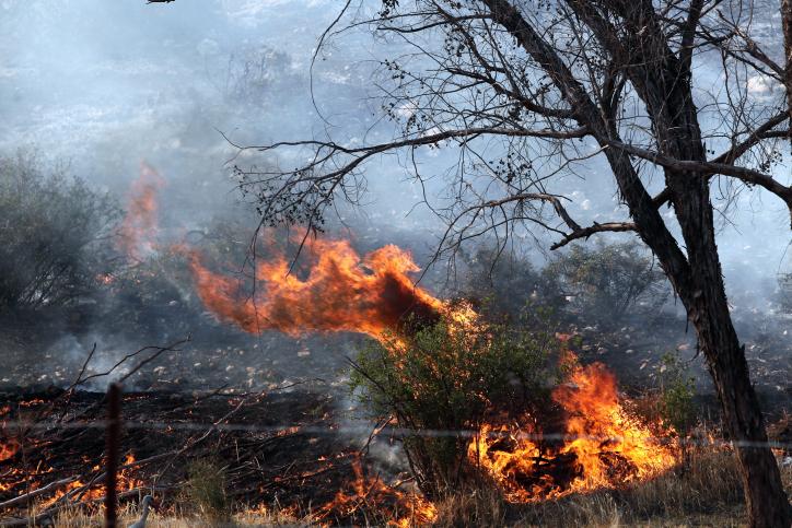Néguev occidental: les photographes se mobilisent pour montrer les dégâts