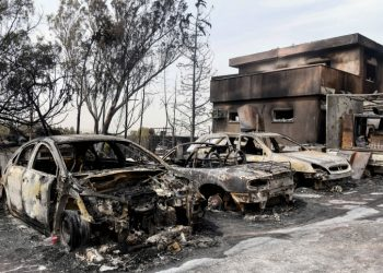 View of the Damage caused from a forest fire in Mevo Modi'im, on May 24, 2019. Photo by Avi Dishi/Flash90 *** Local Caption *** ????? ????? ???? ??? ???? ??? ?? ??? ????? ??? ??? ???? ???????