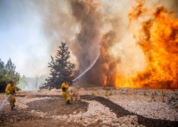 Israeli firefighters try to extinguish a fire which broke out in a forest near Shoresh, outside of Jerusalem, as temperatures are reaching record-high levels all over Israel. August 3, 2021. Photo by Yonatan Sindel/Flash90 *** Local Caption *** שריפה שורש אש חם חום שורש כבאים